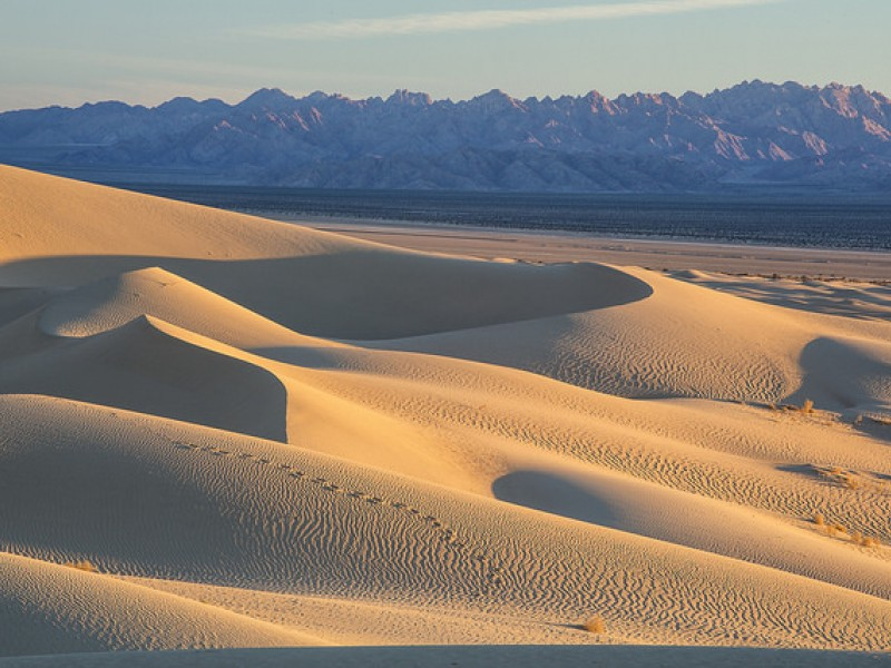 Cadiz, Inc., wants to extract 16 billion gallons of water a year from beneath the Mojave Desert.