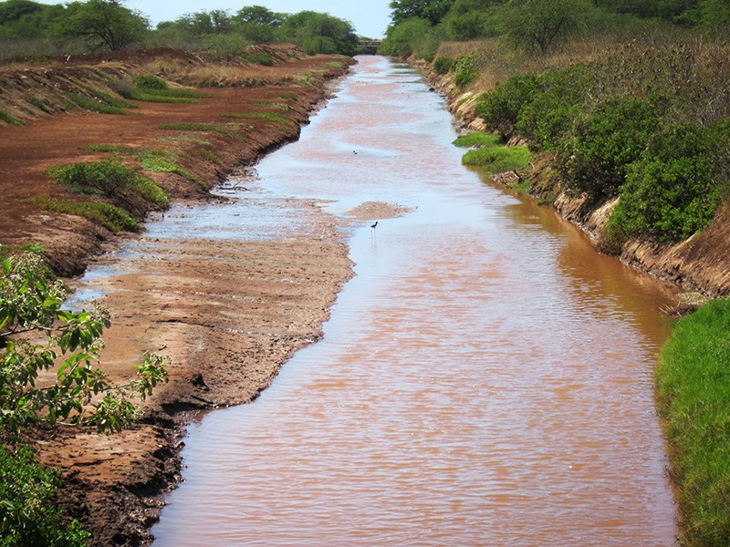 ADC operates a 40-mile drainage ditch system that each day funnels millions of gallons of polluted drainage waters from the Mānā Plain into the ocean near Kekaha and Waimea.