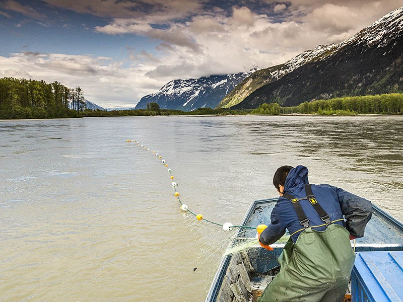 On the Taku River watershed.