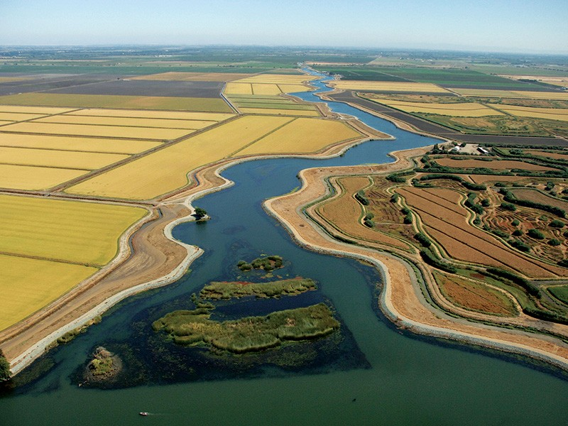 Waterways and sloughs meandering through The Delta in California.