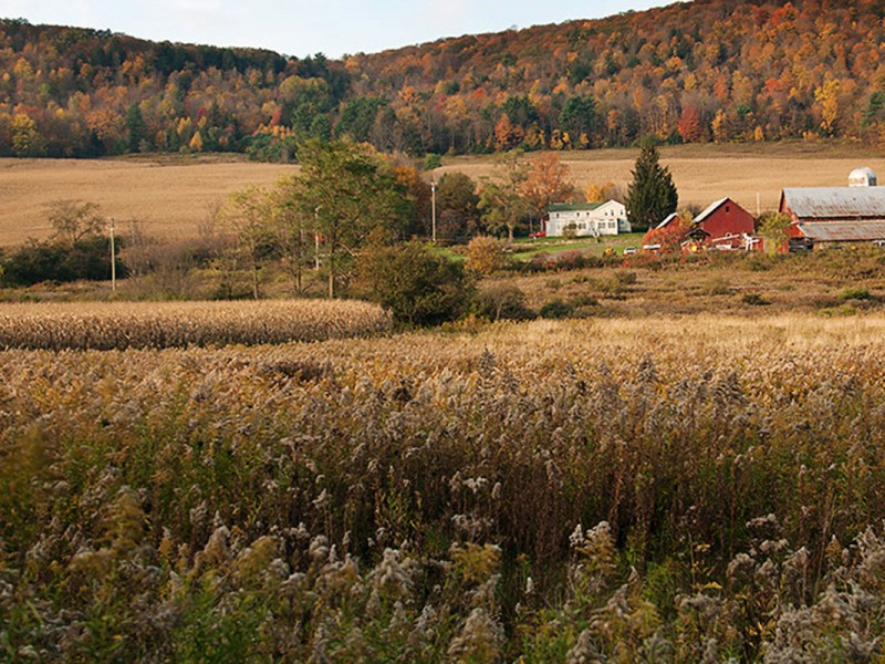 A farmhouse near the town of Dryden in upstate New York.