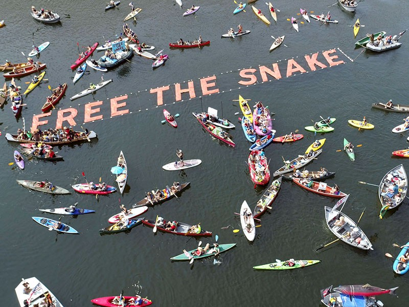 Hundreds of tribal members, boaters, anglers, local business owners and other river advocates take to the water on September 9, 2017 as part of the 'Free the Snake Flotilla' to advocate for dam removal on the Snake River.