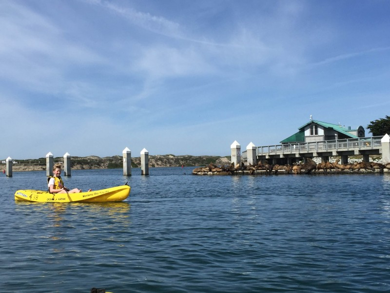 Stacey Geis' daughter kayaking in Elkhorn Slough, located on the Monterey Bay coastline.