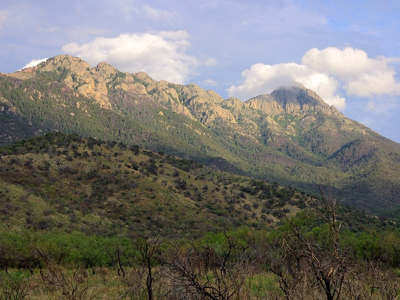 Ce:wi Duag (Santa Rita Mountains)