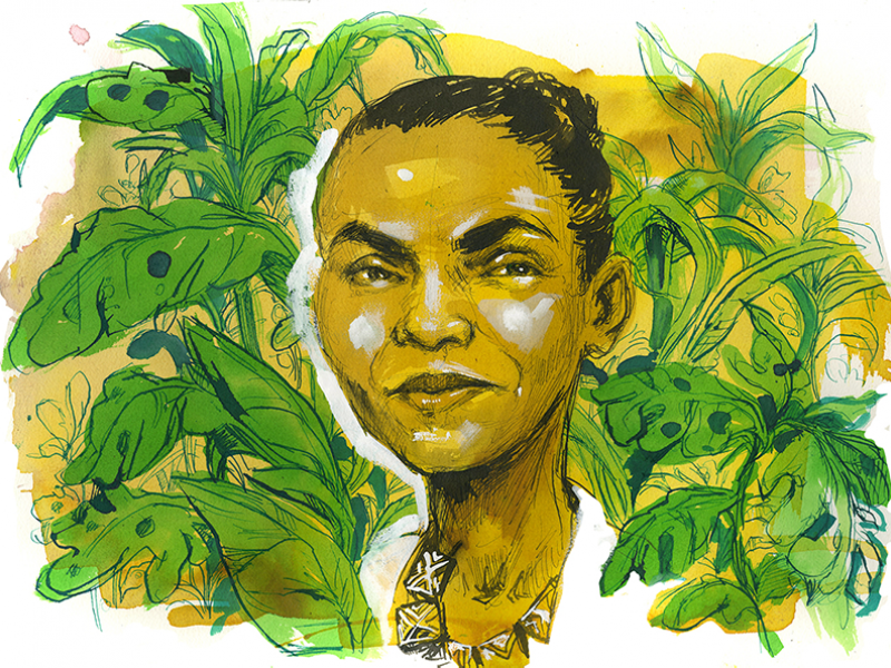 Brazilian politician Marina Silva has called for her country to move rapidly toward clean energy.
