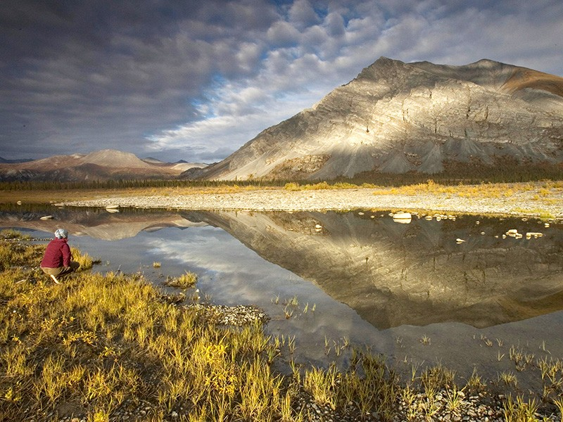 The Arctic National Wildlife Refuge.