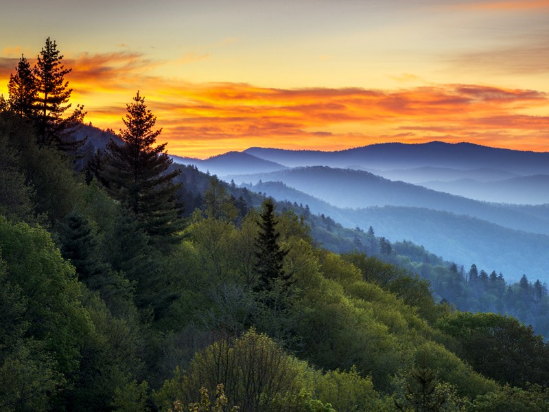 Sunrise in the Great Smokey Mountains, Tennessee.