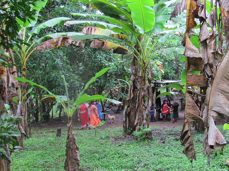 Ngöbe indigenous people are protesting a dam that will displace their homes.