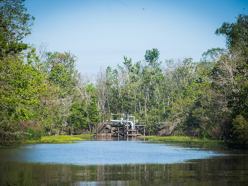 Oil and gas infrastructure in the Atchafalaya Basin, where hundreds of pipelines have been built.