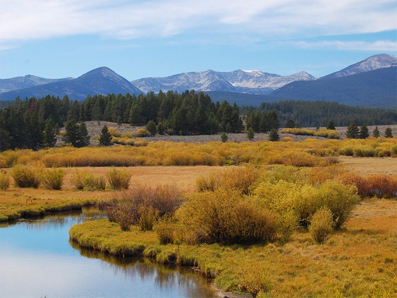 Fall colors in Montana's Beaverhead-Deerlodge National Forest.