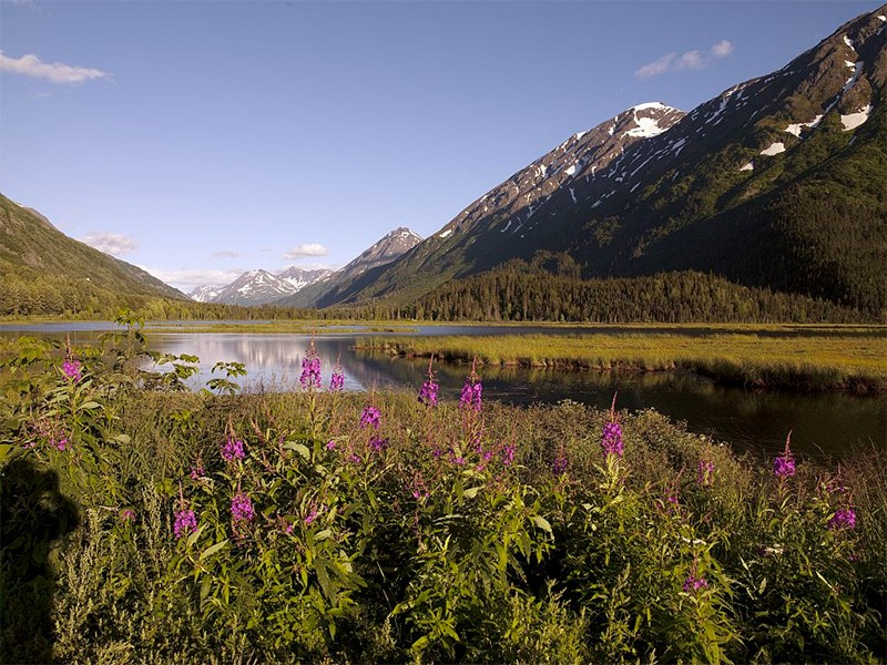 Chugach National Forest, viewed from the Seward highway.