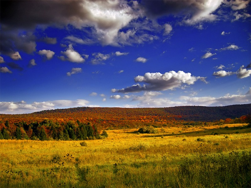 Walpack Valley, Sussex County, within the Delaware Water Gap National Recreation Area.