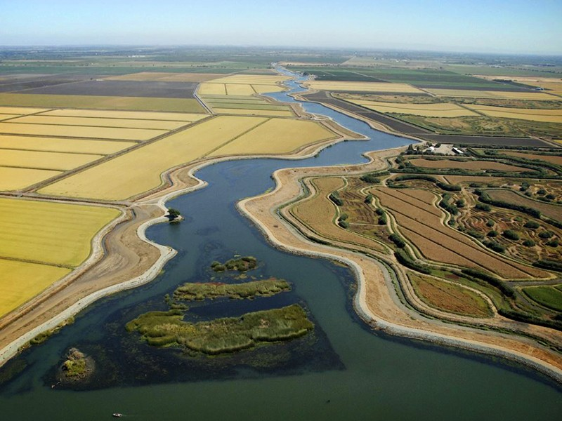 """Earthjustice is representing Restore the Delta to oppose a massive diversion of fresh water from California's Delta for Governor Jerry Brown's proposed """"Twin Tunnels"""" project."""