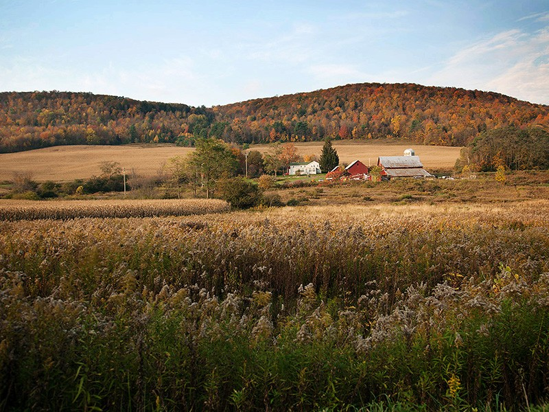 Small farms dot the landscape around the Town of Dryden.