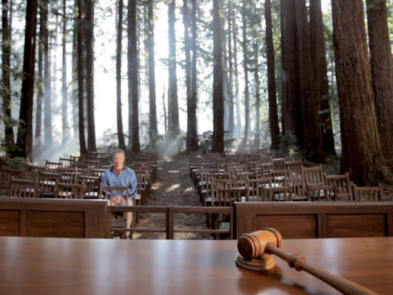 A hiker sits in a courtroom in the middle of a forest