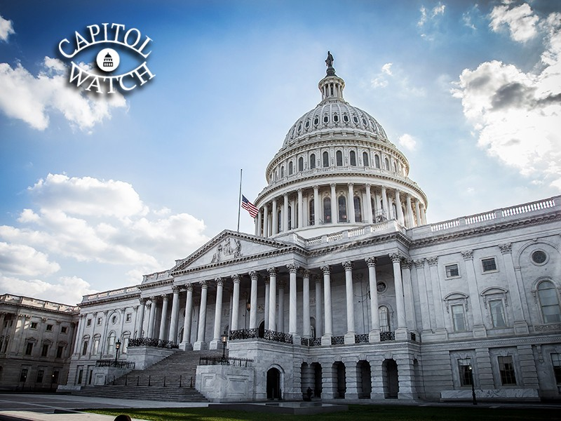 Earthjustice's Jessica Ennis recounts how environmentalists scored a surprise victory in Washington this week.