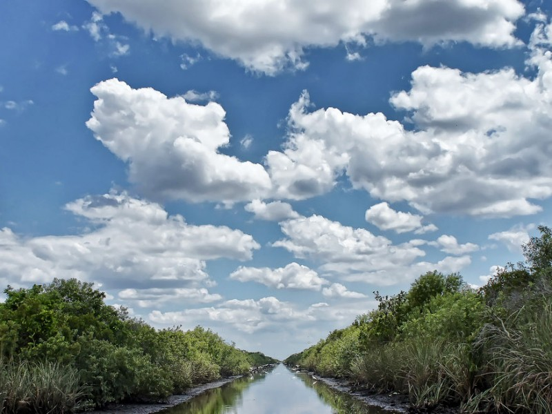 Earthjustice has been working to restore the Everglades for more than two decades.