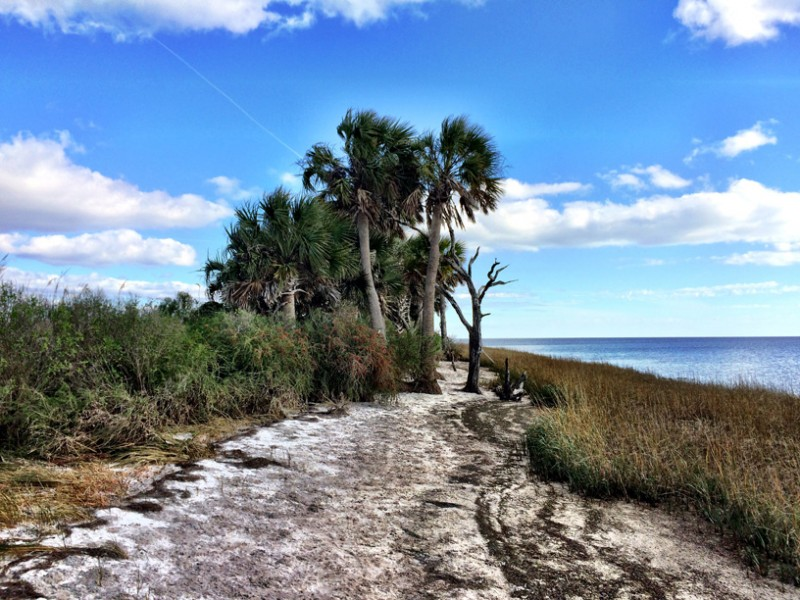 The Florida Forever conservation land-buying program was created to set aside funds for conservation to protect coastal areas like this one.