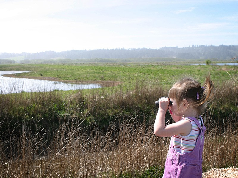 A two-year-old birder at Humboldt Bay.