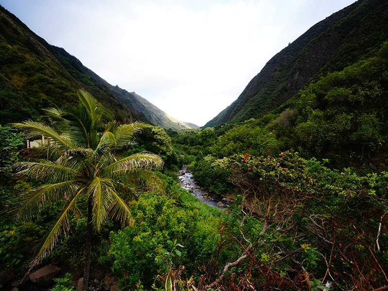 A river in 'Iao Valley.
