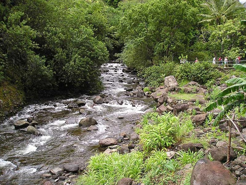 Wailuku River (`Īao Stream) flowing naturally above all diversions at the `Iao Needle State Park.