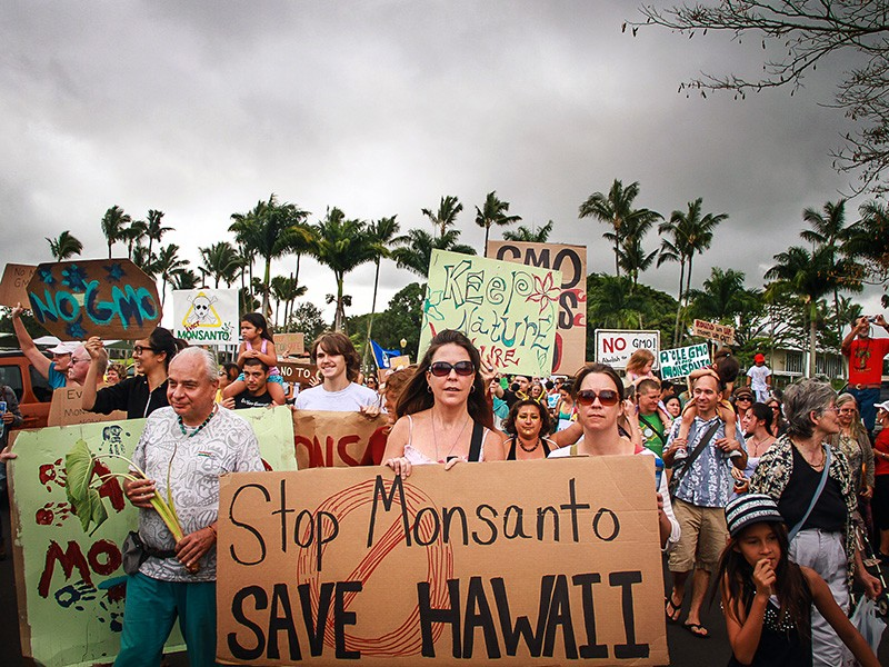 Hawaiians gather in Hilo to protest GMO agribusiness on the islands of Hawaiʻi.
