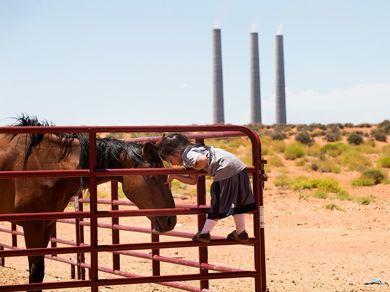 The Navajo Generating Station looms in the background, near Page, Ariz.