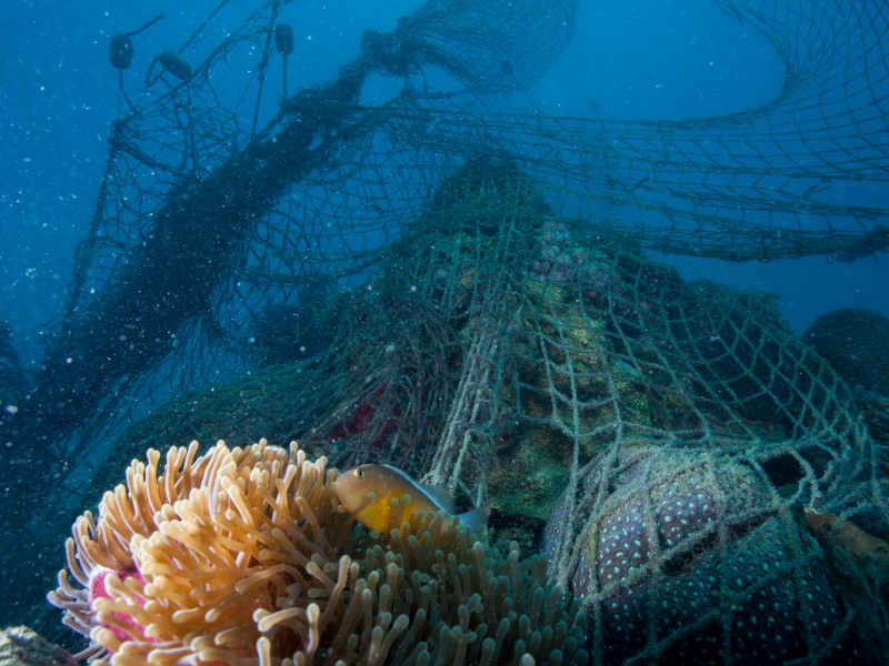 Ocean net destruction