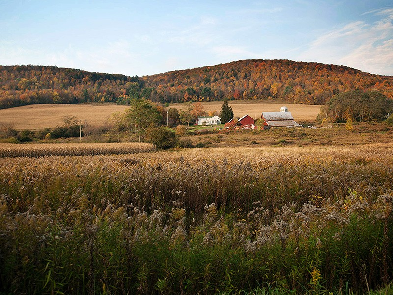 A farm near the town of Dryden in New York.