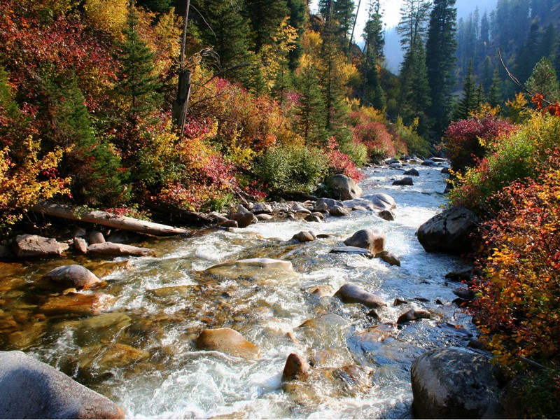 Streams and the bodies of water they flow to will be better protected with the new Clean Water Rule.