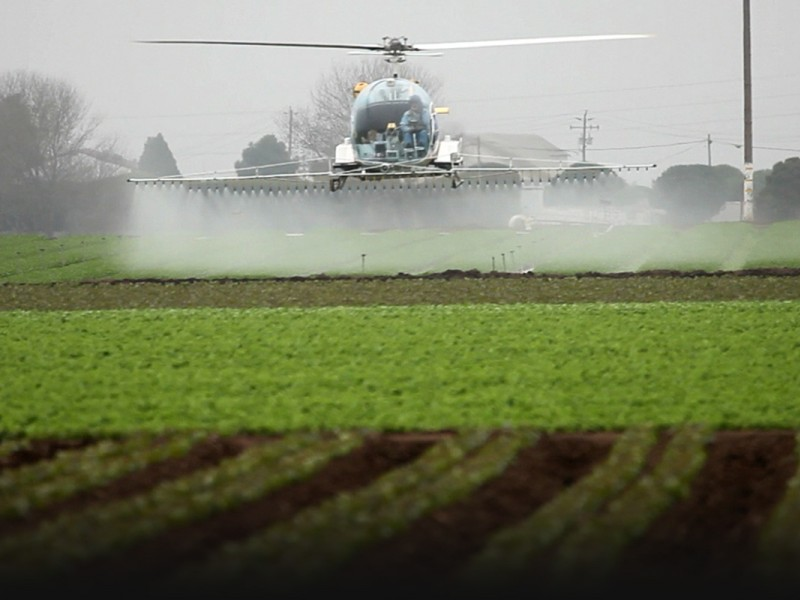 Pesticides being applied to a farm field, near homes.