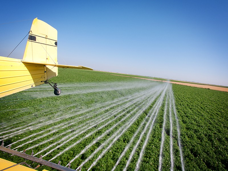 The EPA should ban neurotoxic pesticides now under review and protect against them in the meantime with buffer zones.