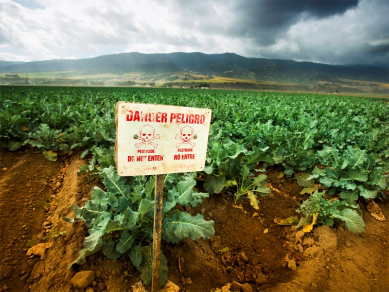Pesticide application sign.