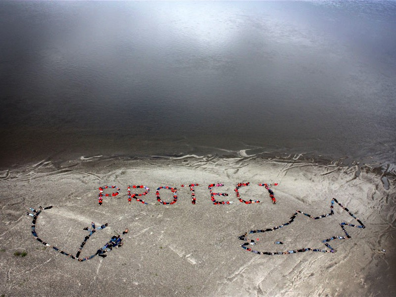 """""""Protect"""" spelled out by activists in the Arctic National Wildlife Refuge"""