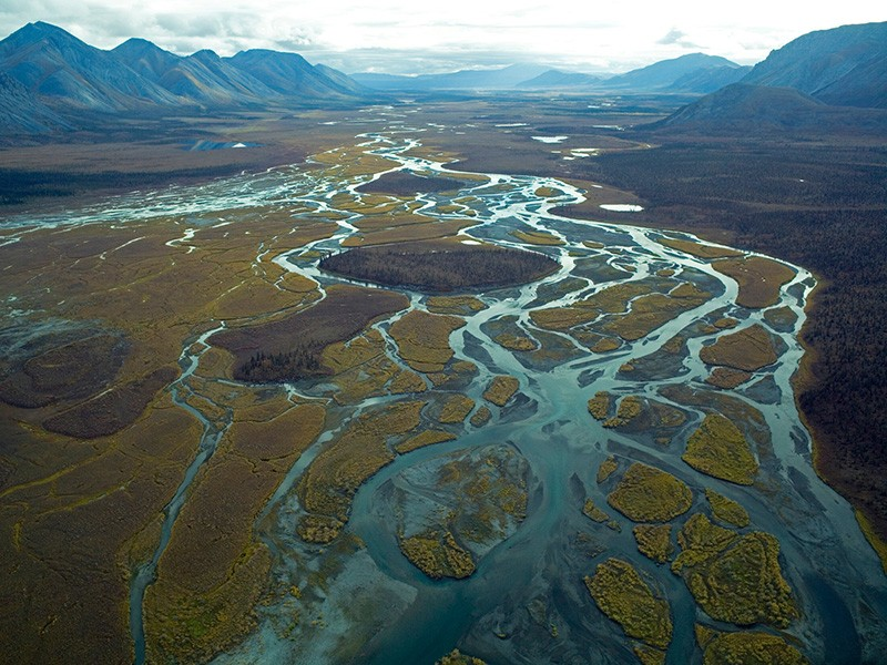 An aerial view of a braided river in the Arctic Refuge.