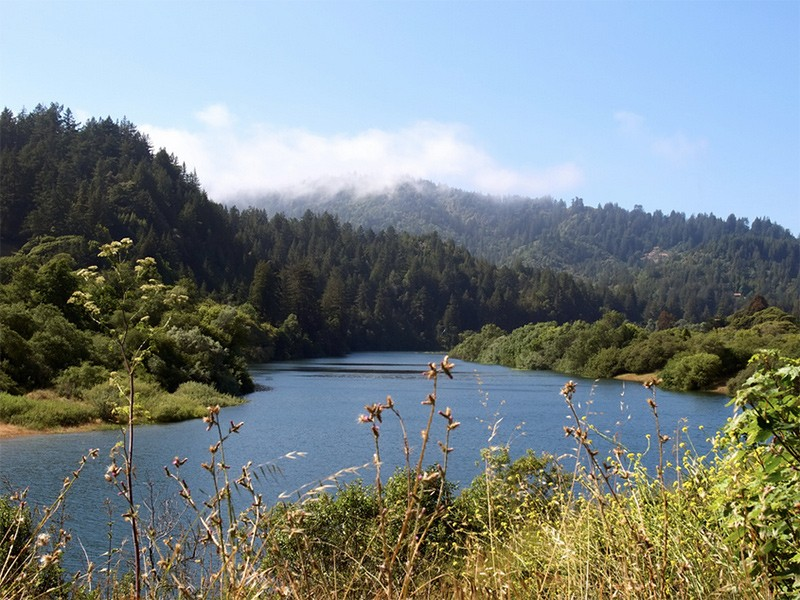 The Russian River, in California's Sonoma County.