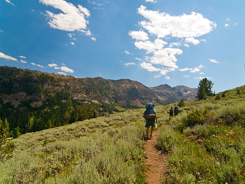 Hikers in Salmon-Challis National Forest.