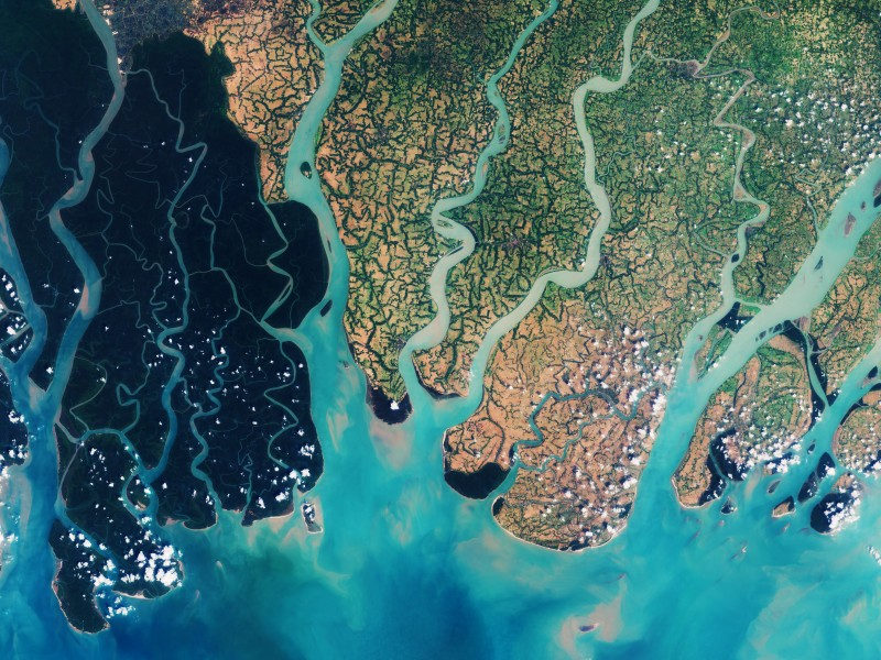 The Sundarbans mangrove forest as seen from outer space.