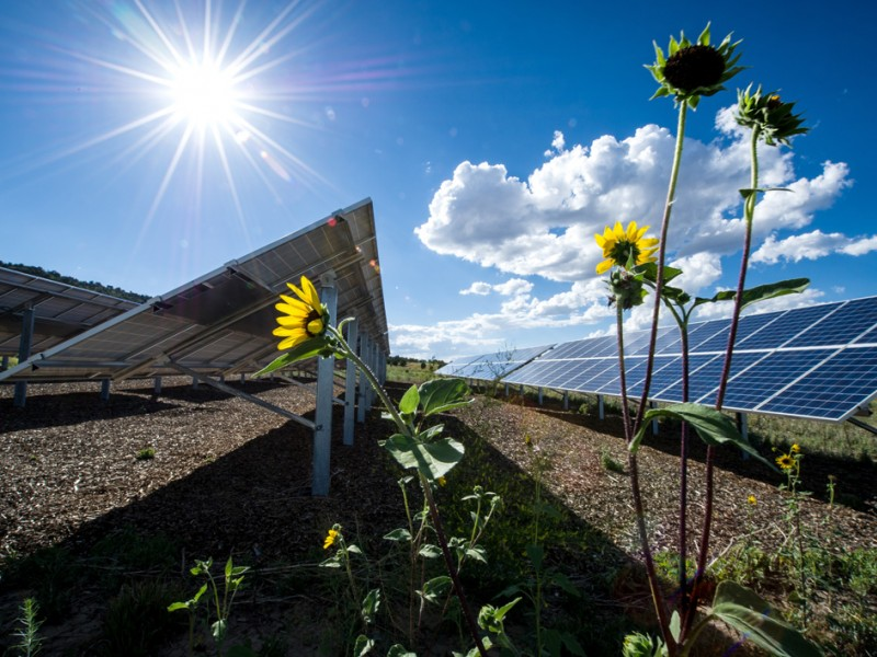 Solar panels at Mesa Verde Visitor and Research Center in Montezuma County, Colorado