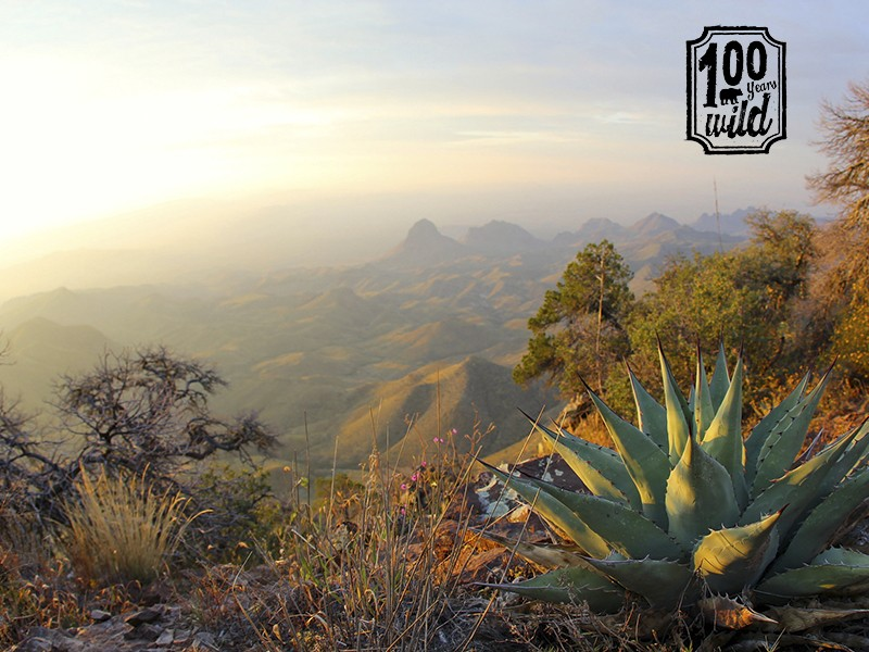 A hazy view at the South Rim overlook of Big Ben National Park in Texas.