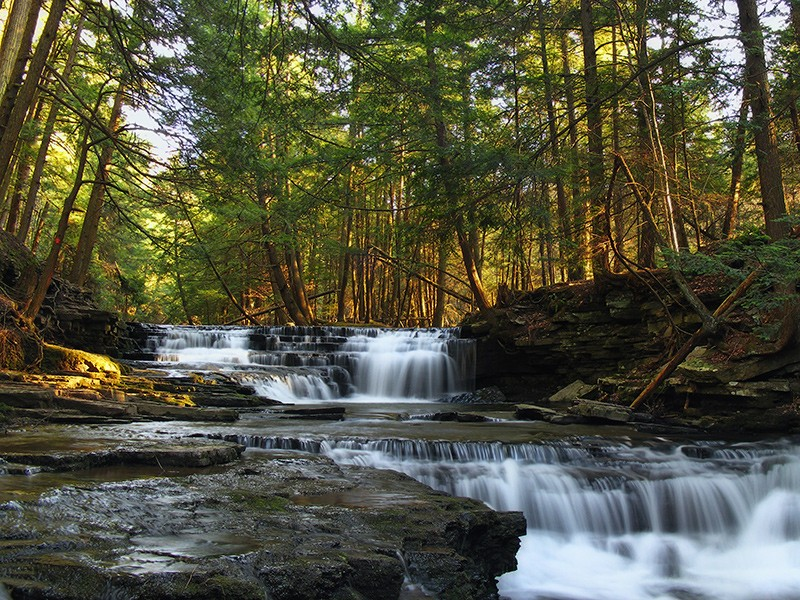 Fall Brook in Susquehanna County. The pipeline and access roads will disturb hundreds of acres of land and will cut across forests, watersheds, and special protection waters.