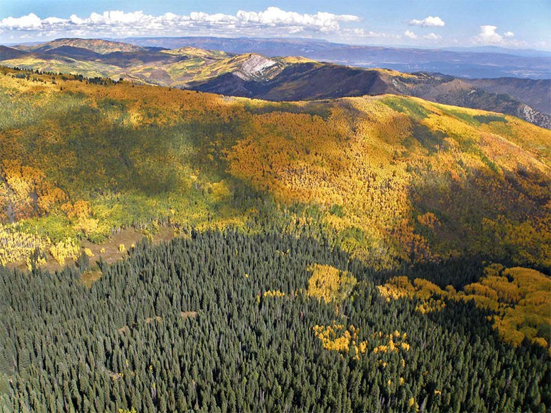 The Thompson Divide is a prized refuge of public lands in Colorado's White River National Forest.