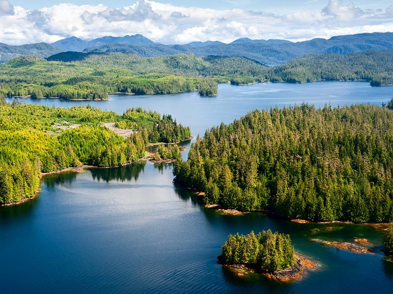 A recent court victory halted a timber sale on Prince of Wales Island in Alaska.