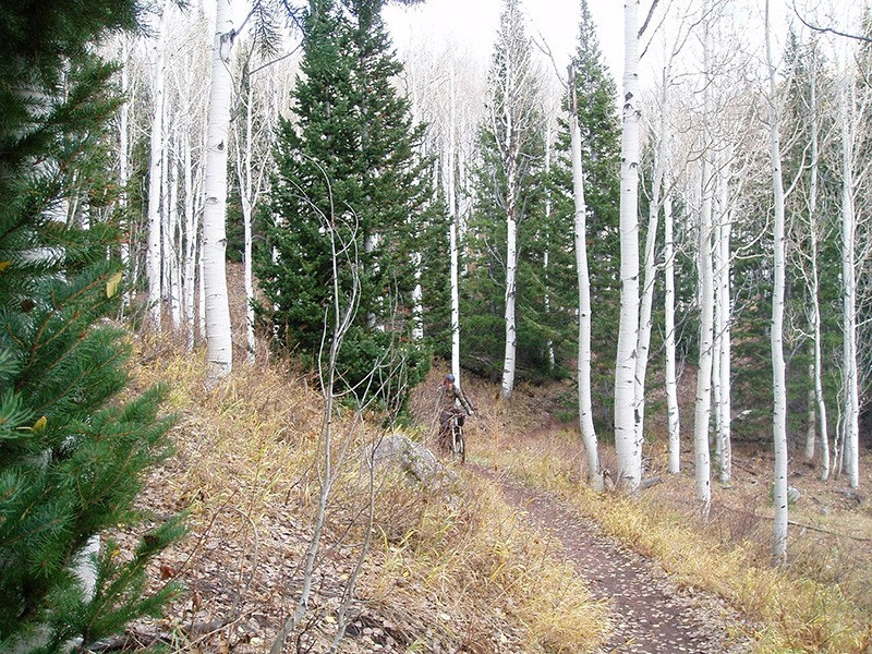 The Wasatch Crest Trail in Utah.