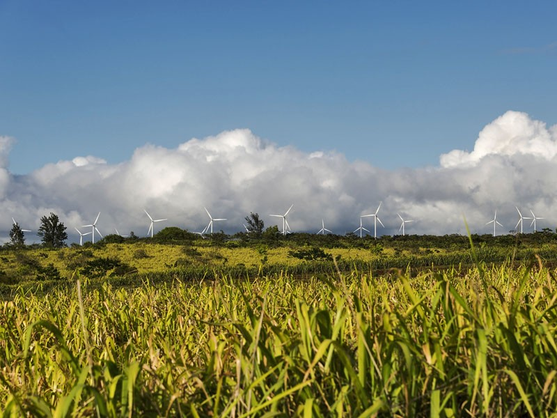 A row of wind turbines on Oahu, Hawaii.