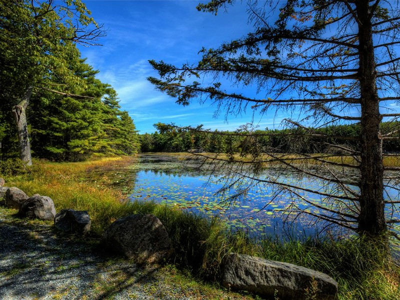 Witch Hole Pond in Acadia National Park.