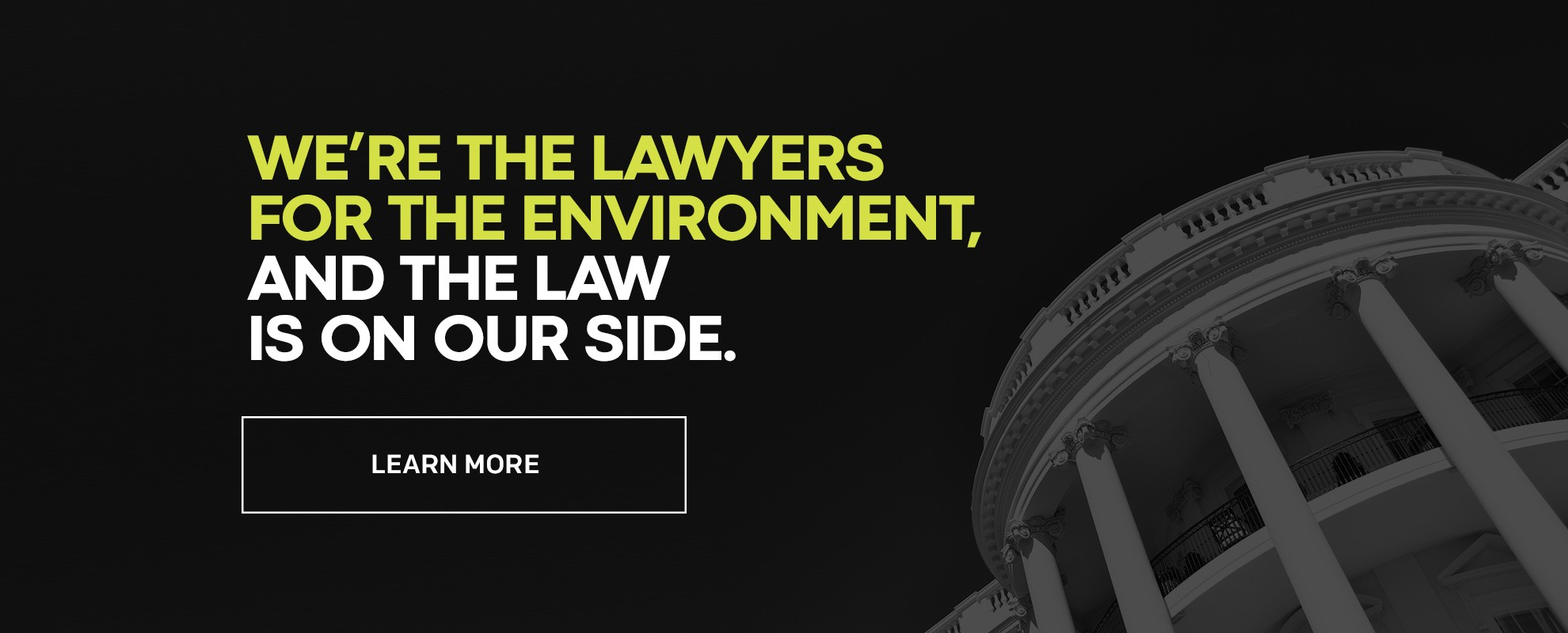 We're the lawyers for the environment, and the law is on our side.