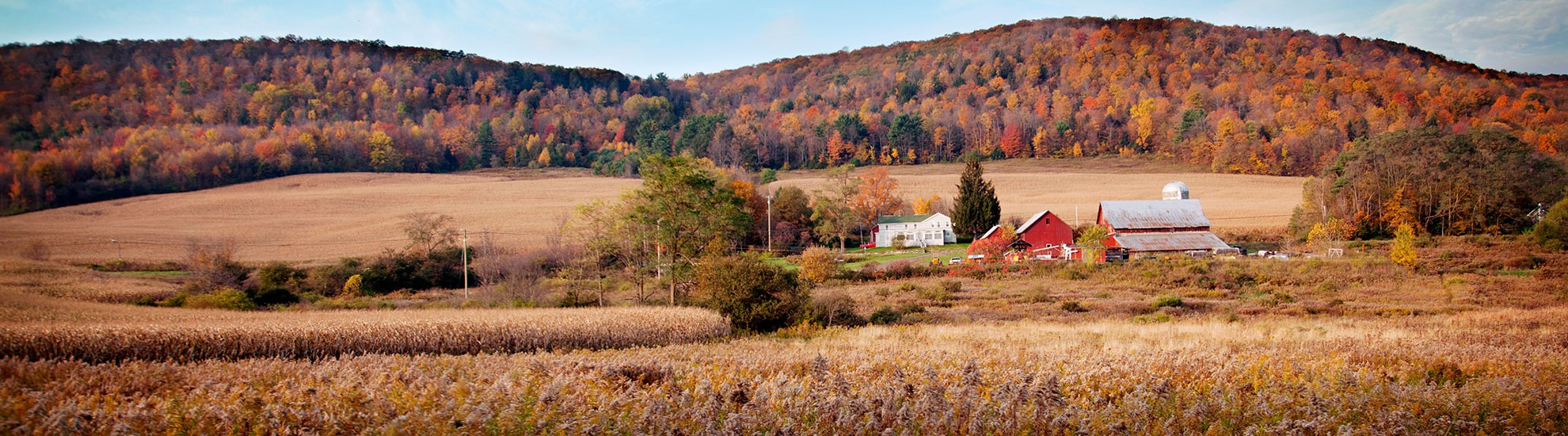 The Town of Dryden, N.Y.