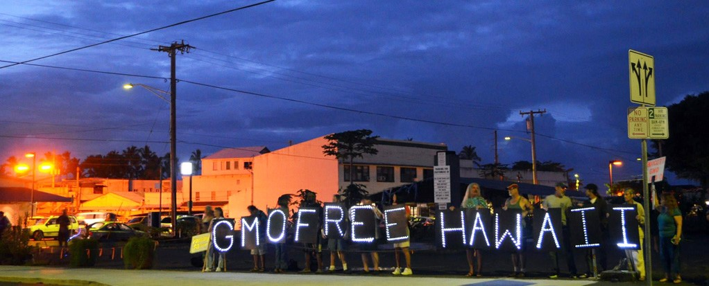 Occupy Hilo Light Brigade and GMO Free Hawaii Island team up for a joint action to raise awareness about GMOs