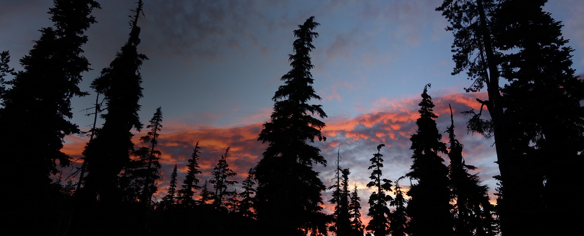 Sunset paints the sky behind a treeline near Crater Lake in Oregon.